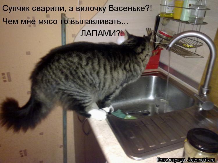 Котоматрица: Супчик сварили, а вилочку Васеньке?! Чем мне мясо то вылавливать... ЛАПАМИ?!