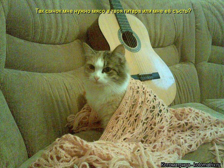 Котоматрица: Так сынок мне нужно мясо а твоя гитара или мне её състь?