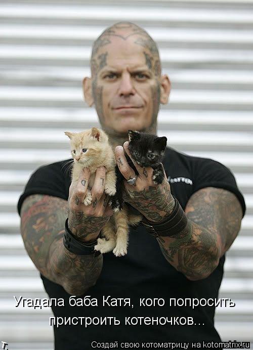 Котоматрица: Угадала баба Катя, кого попросить пристроить котеночков...
