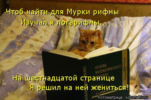 Котоматрица: Чтоб найти для Мурки рифмы Изучал я логарифмы... На шестнадцатой странице Я решил на ней жениться!