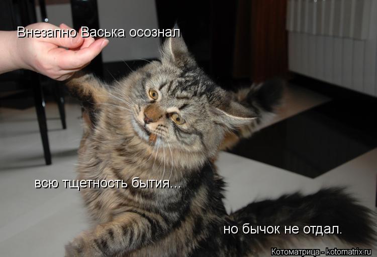 Котоматрица: Внезапно Васька осознал  всю тщетность бытия... но бычок не отдал.