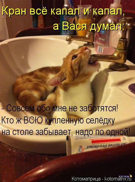 Котоматрица: Кран всё капал и капал, а Вася думал: - Совсем обо мне не заботятся! Кто ж ВСЮ купленную селёдку  на столе забывает, надо по одной!