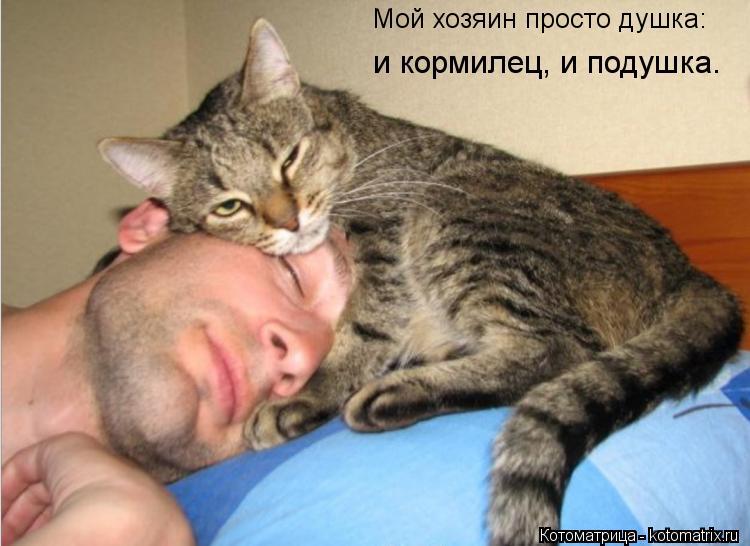 Котоматрица: Мой хозяин просто душка: и кормилец, и подушка.