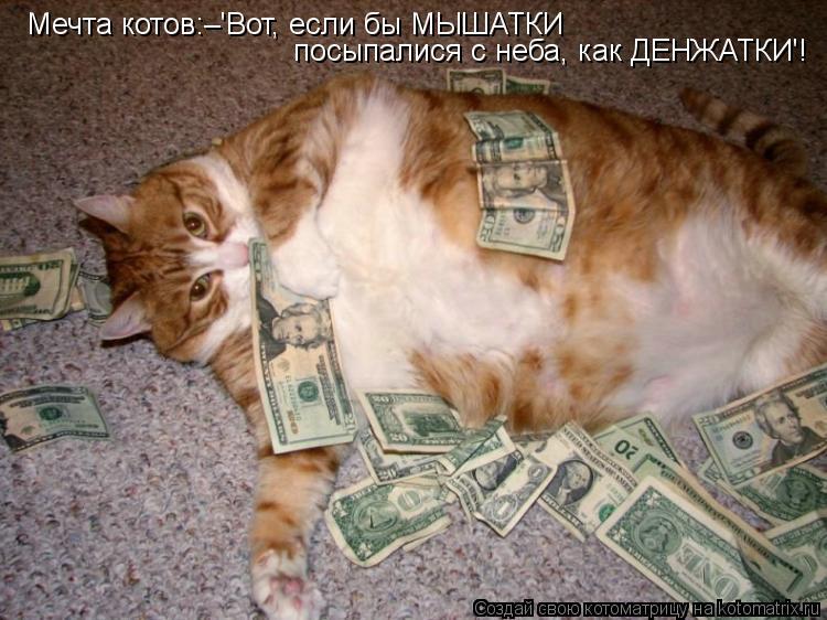 Котоматрица: Мечта котов:–'Вот, если бы МЫШАТКИ посыпалися с неба, как ДЕНЖАТКИ'!