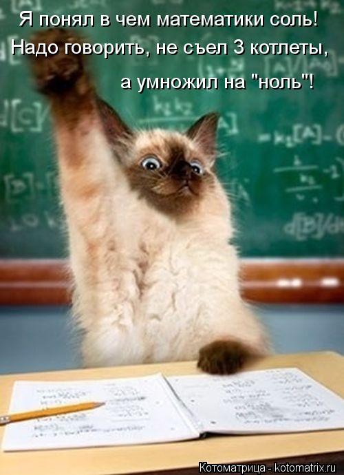 """Котоматрица: Я понял в чем математики соль! Надо говорить, не съел 3 котлеты, а умножил на """"ноль""""!"""
