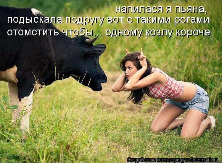 Котоматрица: напилася я пьяна,  подыскала подругу вот с такими рогами отомстить чтобы... одному козлу короче