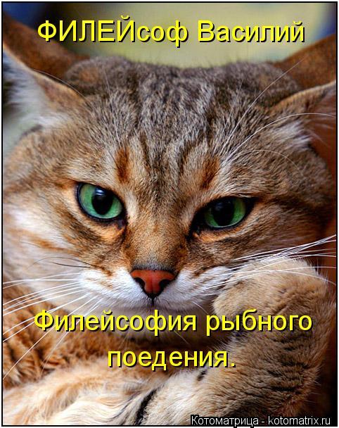 Котоматрица: ФИЛЕЙсоф Василий   Филейсофия рыбного поедения.