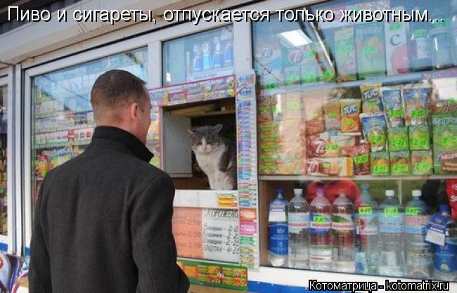 Котоматрица: Пиво и сигареты, отпускается только животным...