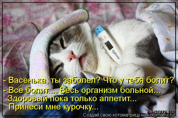 Котоматрица: - Васенька, ты заболел? Что у тебя болит? - Все болит.... Весь организм больной... Здоровый пока только аппетит... Принеси мне курочку...