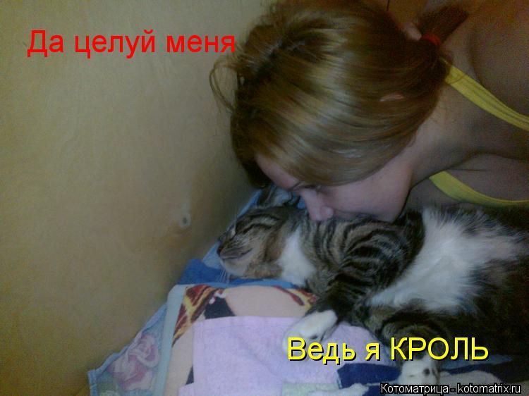 Котоматрица: Да целуй меня Ведь я КРОЛЬ