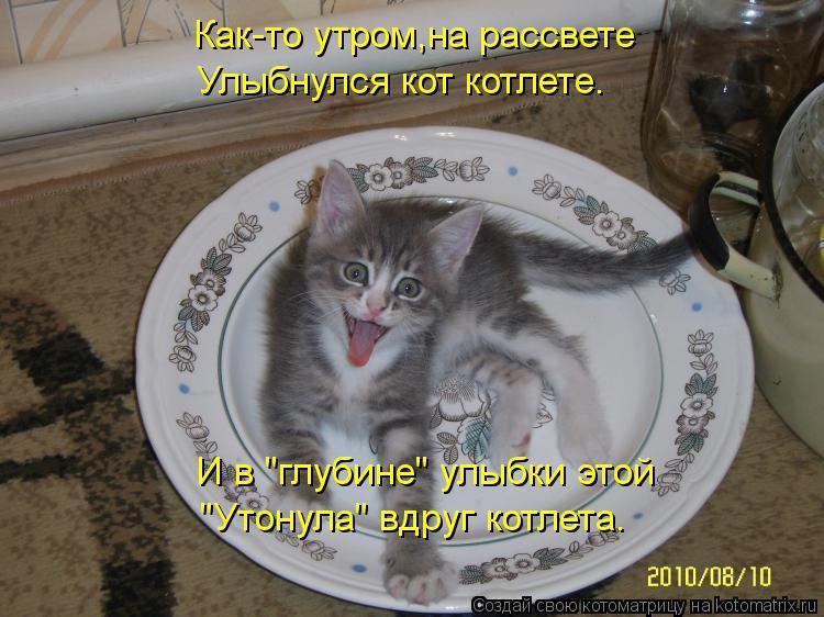 """Котоматрица: Как-то утром,на рассвете Улыбнулся кот котлете. И в """"глубине"""" улыбки этой """"Утонула"""" вдруг котлета."""