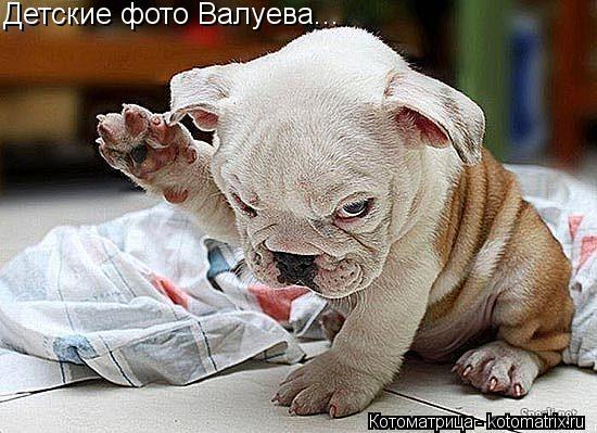 Котоматрица: Детские фото Валуева...