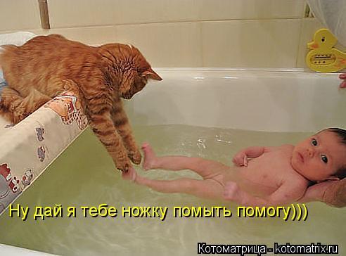 Котоматрица: Ну дай я тебе ножку помыть помогу)))