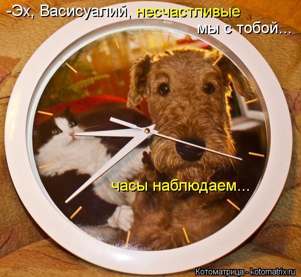 Котоматрица: -Эх, Васисуалий, несчастливые мы с тобой... часы наблюдаем...