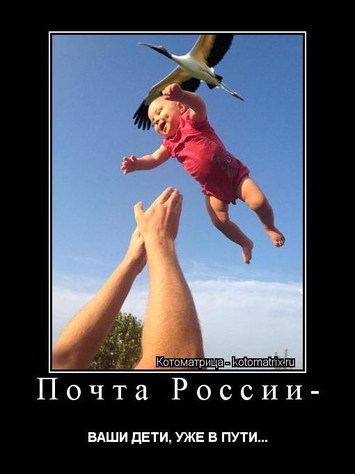 Котоматрица: Почта России- ВАШИ ДЕТИ, УЖЕ В ПУТИ...
