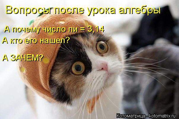 Котоматрица: Вопросы после урока алгебры А почему число пи = 3,14 А кто его нашел? А ЗАЧЕМ?