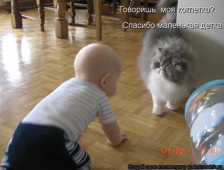 Котоматрица: Говоришь, моя котлетка? Спасибо маленькая детка.