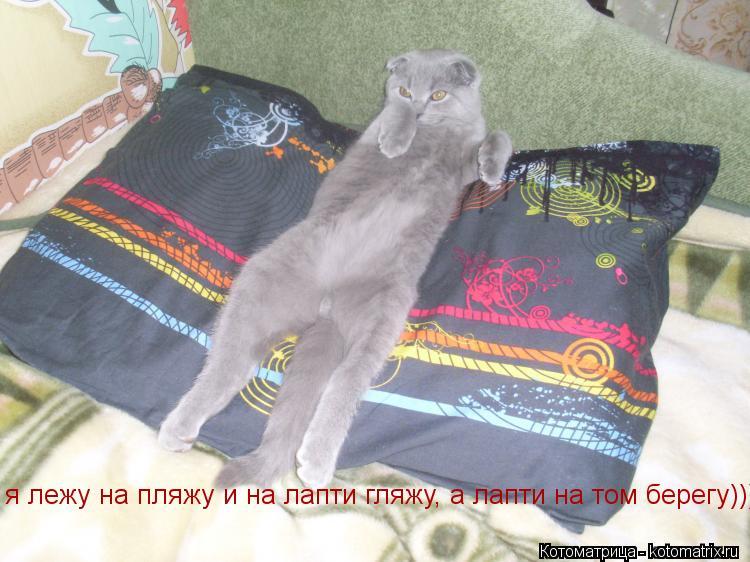 Котоматрица: я лежу на пляжу и на лапти гляжу, а лапти на том берегу)))