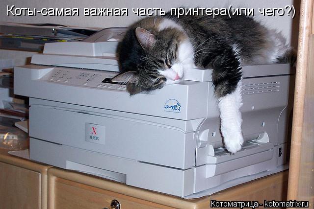 Котоматрица: Коты-самая важная часть принтера(или чего?)