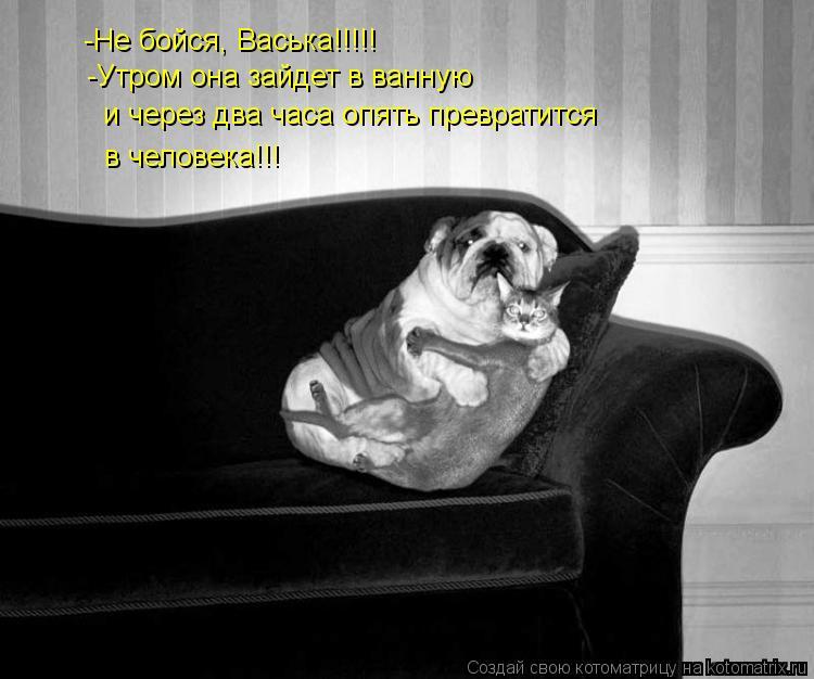 Котоматрица: -Не бойся, Васька!!!!! -Утром она зайдет в ванную  и через два часа опять превратится в человека!!!