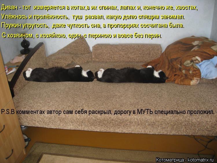 Котоматрица: Диван - тот  измеряется в котах,в их спинах, лапах и, конечно же, хвостах, Улёжнось и пролёжность,  туш  развал, какую долю спящим занимал. Пруж