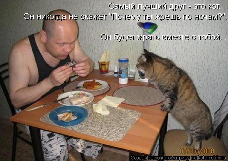 """Котоматрица: Самый лучший друг - это кот. Он никогда не скажет """"Почему ты жрешь по ночам?"""". Он будет жрать вместе с тобой..."""