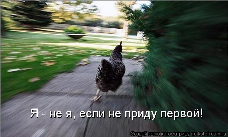 Котоматрица: Я - не я, если не приду первой!