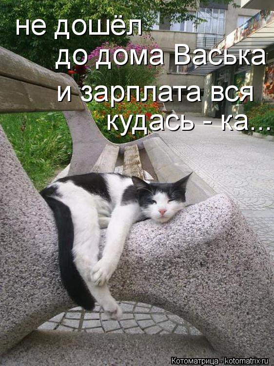 Котоматрица: не дошёл до дома Васька и зарплата вся  кудась - ка...