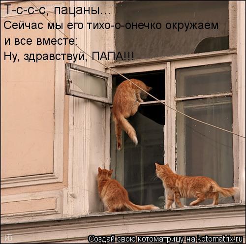 Котоматрица: Т-с-с-с, пацаны... Сейчас мы его тихо-о-онечко окружаем и все вместе: Ну, здравствуй, ПАПА!!!