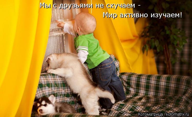 Котоматрица: Мы с друзьями не скучаем - Мир активно изучаем!