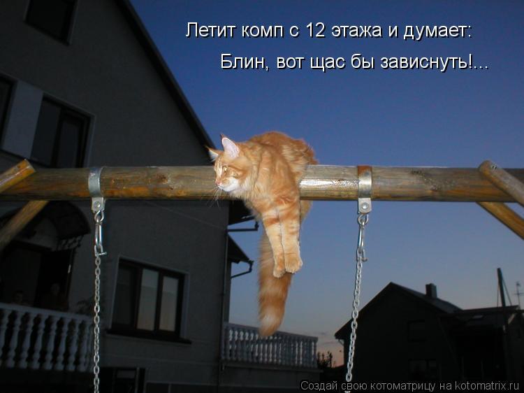 Котоматрица: Летит комп с 12 этажа и думает: Блин, вот щас бы зависнуть!...