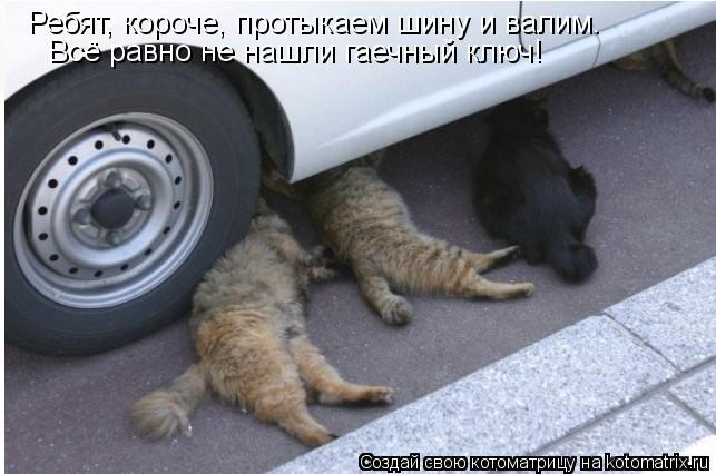 Котоматрица: Ребят, короче, протыкаем шину и валим. Всё равно не нашли гаечный ключ!