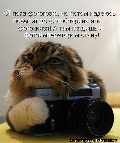 Котоматрица: -Я пока фотограф, но потом надеюсь  повысят до фотобоярина или  фотокнязя! А там глядишь и фотоимператором стану!