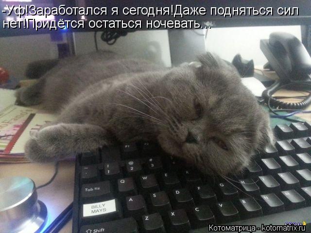 Котоматрица: -Уф!Заработался я сегодня!Даже подняться сил нет!Придётся остаться ночевать...
