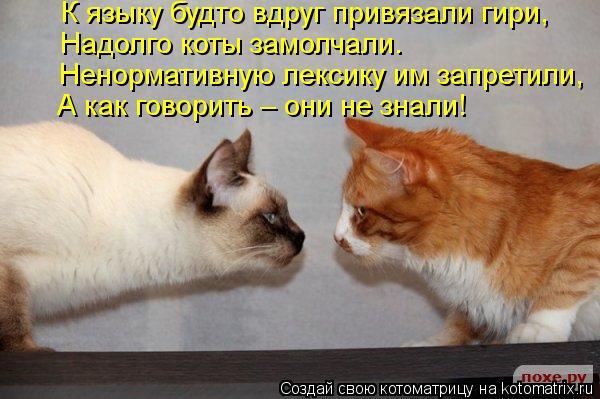 Котоматрица: К языку будто вдруг привязали гири, Надолго коты замолчали. Ненормативную лексику им запретили, А как говорить – они не знали!