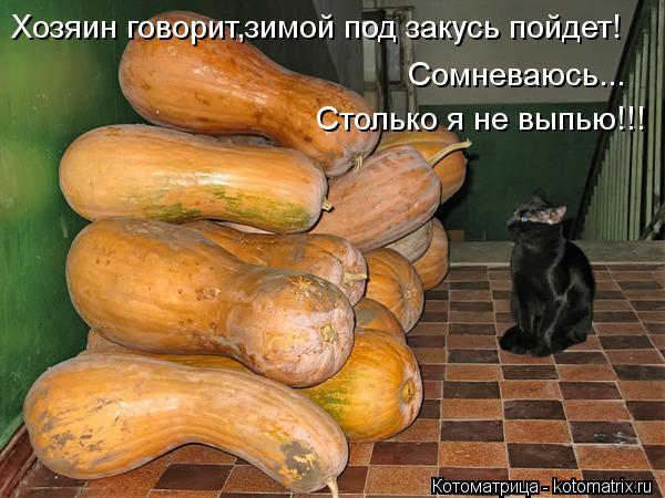 Котоматрица: Хозяин говорит,зимой под закусь пойдет! Сомневаюсь... Столько я не выпью!!!