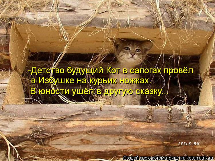 Котоматрица: -Детство будущий Кот в сапогах провёл  в Избушке на курьих ножках. В юности ушёл в другую сказку...