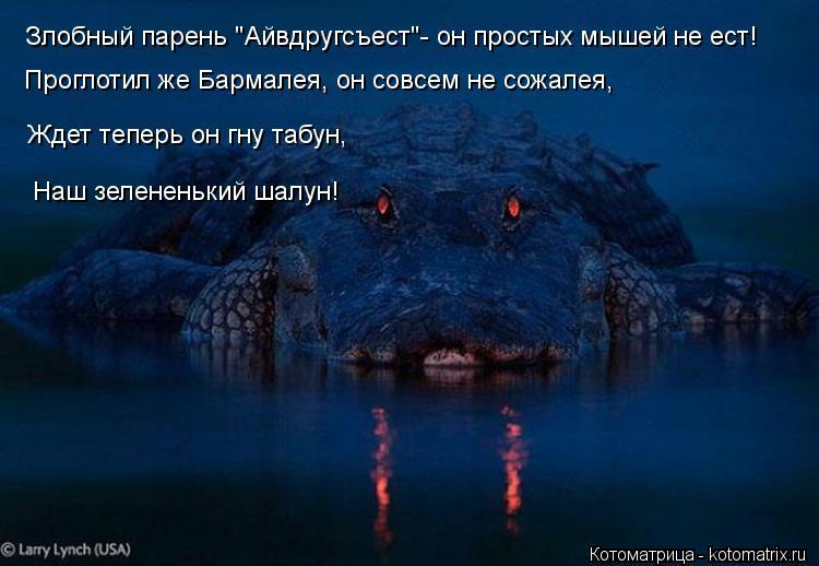 """Котоматрица: Злобный парень """"Айвдругсъест""""- он простых мышей не ест! Проглотил же Бармалея, он совсем не сожалея,  Ждет теперь он гну табун, Наш зелененьки"""