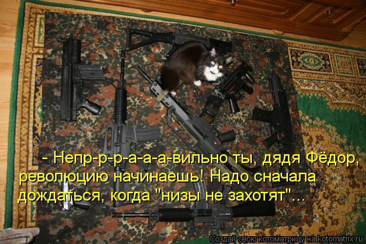 """Котоматрица: - Непр-р-р-а-а-а-вильно ты, дядя Фёдор, революцию начинаешь! Надо сначала дождаться, когда """"низы не захотят""""..."""