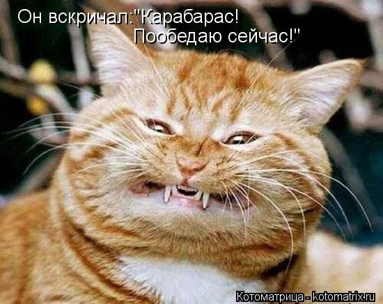 """Котоматрица: Он вскричал:""""Карабарас! Пообедаю сейчас!"""""""