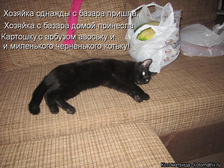Котоматрица: Хозяйка с базара домой принесла Хозяйка однажды с базара пришла, Картошку.с арбузом авоську и и миленького черненького котьку!