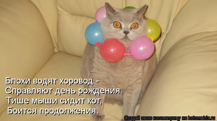 Котоматрица: Блохи водят хоровод -  Справляют день рождения. Тише мыши сидит кот, Боится продолжения.