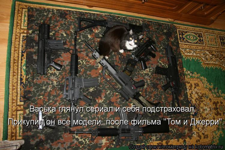 """Котоматрица: Васька глянул сериал и себя подстраховал. Прикупил он все модели, после фильма """"Том и Джерри""""."""