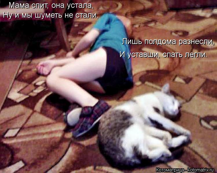 Котоматрица: Мама спит, она устала, Ну и мы шуметь не стали, Лишь полдома разнесли, И уставши, спать легли.