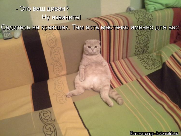 Котоматрица: - Это ваш диван? Ну извините! Садитесь на краюшек. Там есть местечко именно для вас.