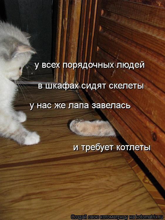 Котоматрица: у нас же лапа завелась и требует котлеты у всех порядочных людей  в шкафах сидят скелеты