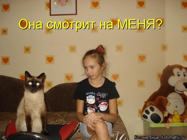 Котоматрица: Она смотрит на МЕНЯ?