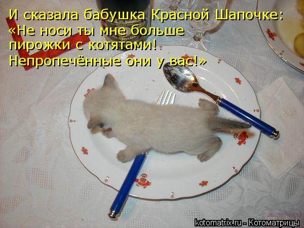 Котоматрица: И сказала бабушка Красной Шапочке: «Не носи ты мне больше  пирожки с котятами! Непропечённые они у вас!»