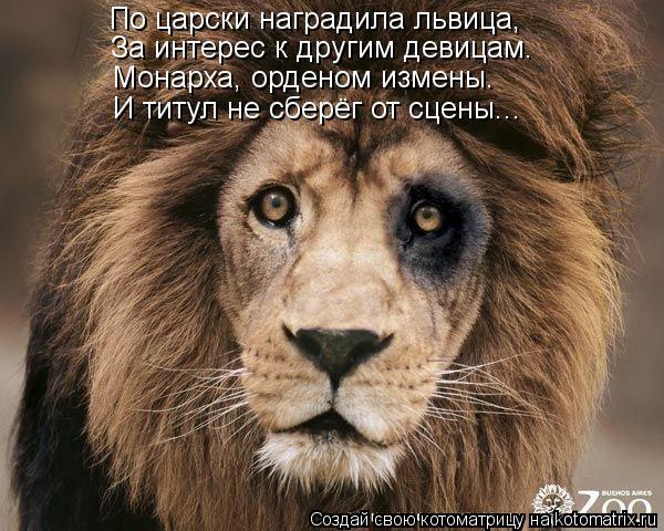 Котоматрица: По царски наградила львица, За интерес к другим девицам. Монарха, орденом измены.  И титул не сберёг от сцены...