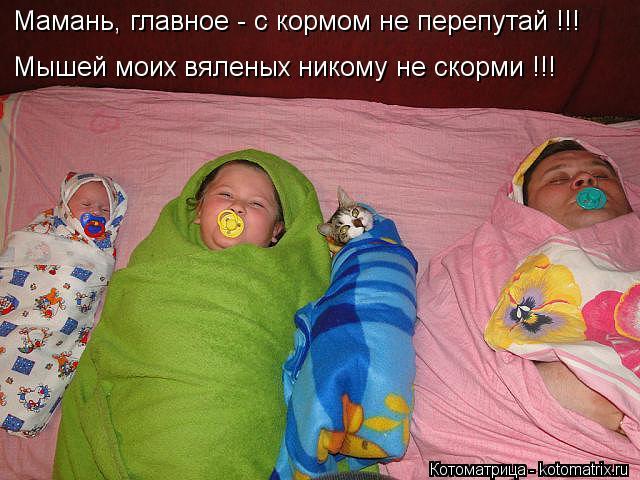 Котоматрица: Мамань, главное - с кормом не перепутай !!! Мышей моих вяленых никому не скорми !!!